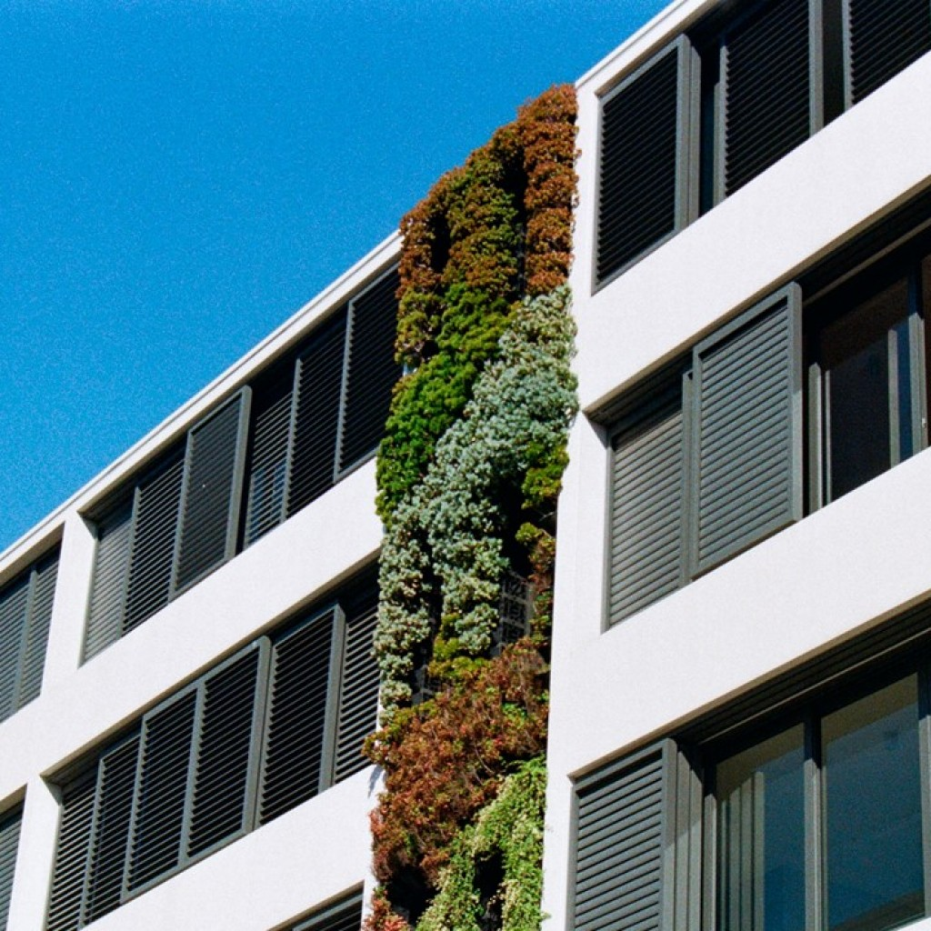 How the Green Homes Grant effects social housing