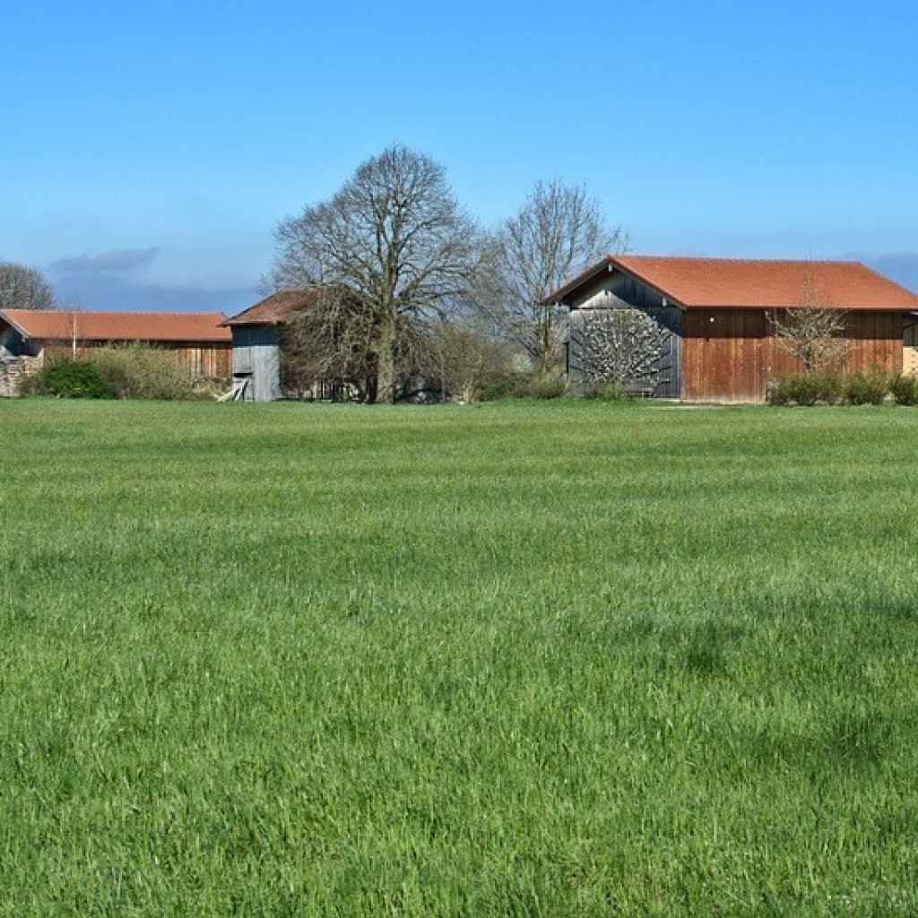 Court of Appeal clarifies extent of permitted development rights for agricultural buildings